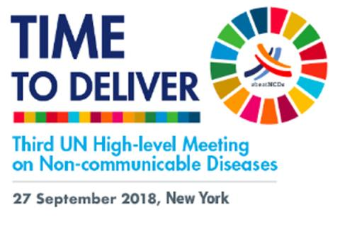 FDI network_UN HLM on NCDs